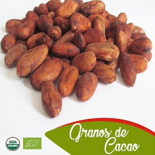 Cacao Grains